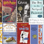 90 Popular Accelerated Reader Books for Grades 1-12