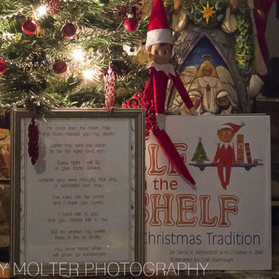 The Elf on the Shelf A Christmas Tradition Book Review