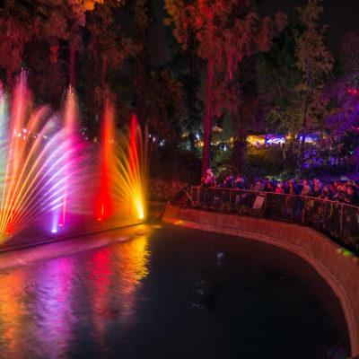L.A. Zoo Lights – A Dazzling Wonderland