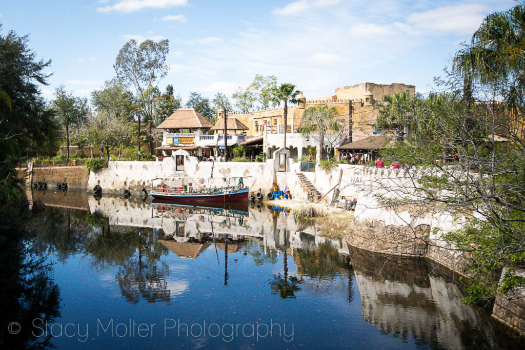 Disney's Animal Kingdom Reflects Walt's Dedication to Conservation