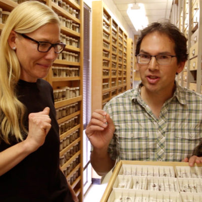 """Natural History Museum's """"The Curiosity Show"""" Lands Online"""