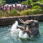 LA Zoo's World Elephant Day Weekend