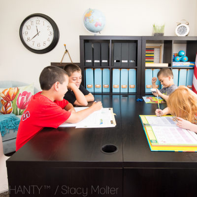 Why You Need an In-Home Homeschool Tutor