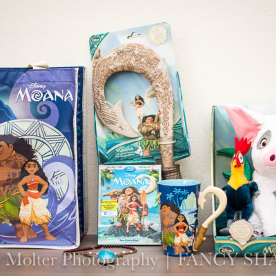 Must Have Moana Toys