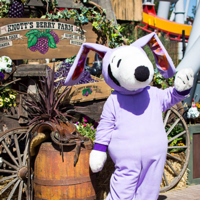 5 Tips for Eating Your Way Through Knott's Boysenberry Festival 2017