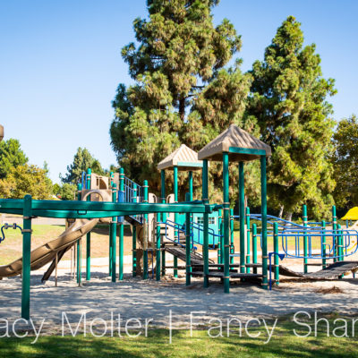 Accessible and Inclusive Playgrounds by Landscape Structures