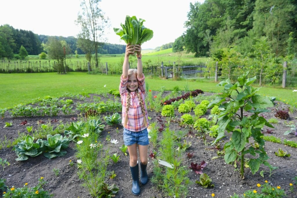 Fall Gardening Lesson Plans for Your Homeschool